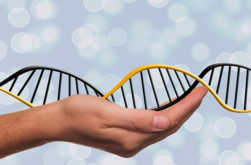 Genetica ed epigenetica